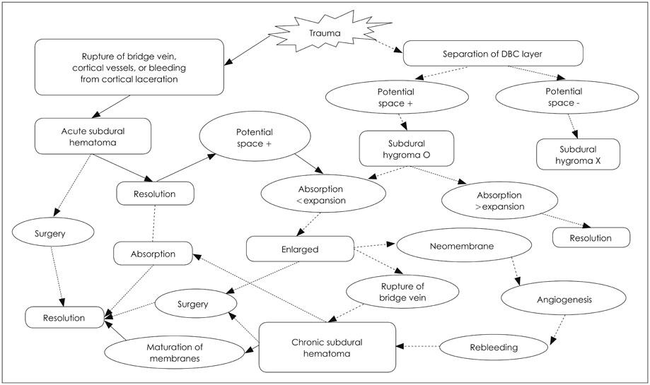 History of Chronic Subdural Hematoma